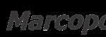 Marcopolo usará grafeno para reducir el peso y aumentar la resistencia en los autobuses